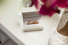 Stylish gold rings in cute little white box Royalty Free Stock Photography