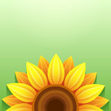Stylish green background with 3d sunflower. Stylish green background with stylized 3d sunflower, place for text. Floral backdrop with yellow, orange summer Stock Photos