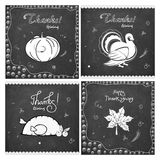 Stylish greeting card set for Thanksgiving Day. Royalty Free Stock Images