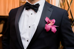 Stylish groom in black jacket, white shirt and black necktie with boutonniere with orchid Stock Images