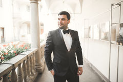 Stylish groom posing on background old castle Royalty Free Stock Photography