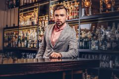 Stylish handsome male in an elegant suit standing at bar counter background. Stylish handsome man in an elegant suit standing at bar counter background Royalty Free Stock Image