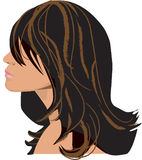 Stylish highlighted hair Royalty Free Stock Image
