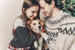 Stylish hipster couple in sweaters hugging with dog and smiling. At christmas tree in festive room.cute sweet moments. merry christmas and happy new year Royalty Free Stock Photo