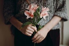 Stylish hipster girl holding pink flowers. boho woman with beaut royalty free stock photography