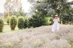 Stylish hipster girl in linen dress and hat relaxing in lavender field near tree, focus on lavender. Bohemian woman enjoying. Summer  in mountains. Atmospheric royalty free stock photo