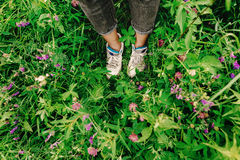 Stylish hipster woman legs and sneakers in colorful grass and wi. Ldflowers  in summer mountains, travel concept Stock Photography