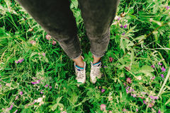 Stylish hipster woman legs and sneakers in colorful grass and wi. Ldflowers  in summer mountains, travel concept Stock Photos