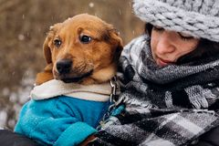 Stylish hipster woman playing with cute puppy in snowy cold winter park and caress. moments of true happiness. adoption concept. Save animals stock photo