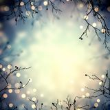 Lights garland on winter branches. Retro romantic festive background. Golden sparks in trees. Bokeh texture. Blue yellow natural b. Stylish image for a variety Stock Photos