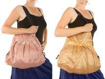 Stylish Indian Handbag Stock Images