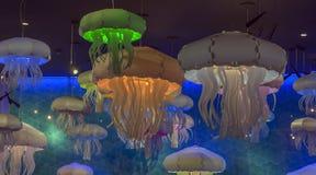 Stylish jellyfish pendant lights illuminate the blue room. Stylish jellyfish pendant green, blue and white lights illuminate the blue room stock image