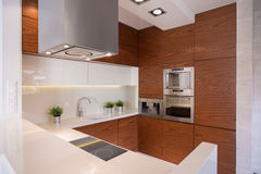 Stylish kitchen with ceramic tiles Royalty Free Stock Photo