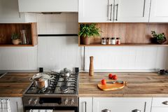 Stylish kitchen interior with modern cabinets and stainless stee. L appliances in new home. design in scandinavian style. cooking food. green plants decor stock image