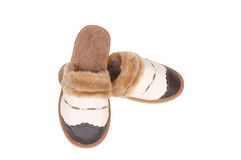 Stylish leather neat slippers on a white. Stock Photos