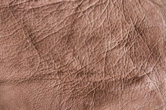 Stylish leather texture Royalty Free Stock Image