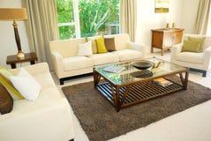 Stylish living room Royalty Free Stock Image