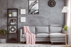Stylish living room with clock. Stylish living room with comfortable grey corner sofa, small tree on the floor and black clock on dark wall stock images