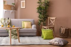 Stylish living room interior with comfortable sofa stock photos