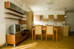 Stylish livingr oom connected with kitchen. Trendy living room connected with kitchen Stock Image
