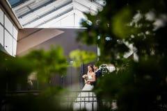 Stylish luxury bride and groom Stock Photos