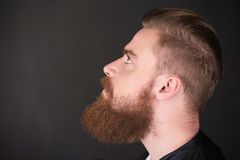 Stylish man with beard looking up Stock Images
