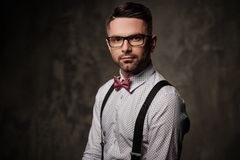 Stylish man with bow tie posing on dark background. Royalty Free Stock Photo