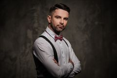 Stylish man with bow tie posing on dark background. Royalty Free Stock Image