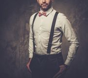Stylish man with bow tie wearing suspenders and posing on dark  background. Stock Image
