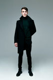 Stylish man in coat royalty free stock image