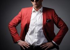 Stylish man Royalty Free Stock Photos