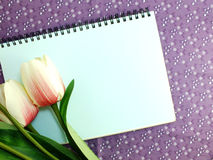 Stylish mock up with flowers to display your artworks Stock Images