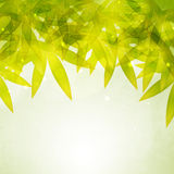 Stylish natural pattern with leaf. Stock Photography
