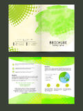 Stylish Nature Flyer or Brochure design. Royalty Free Stock Photos
