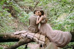 Stylish newlyweds having rest on a plaid in the forest. The bride and groom sits on the log in nature. Back view stock photography