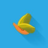Stylish Papaya Isolated On Blue Background Stock Image