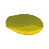 Stylish Papaya Isolated On White Background Stock Images