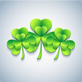 Stylish Patricks day card with green 3d leaf clover Stock Images