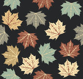 Stylish pattern with autumn leaves Stock Photos