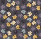 Stylish pattern with autumn Maple leaves Stock Photo