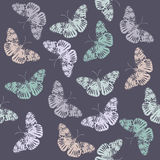 Stylish pattern with butterfly's. Seamless pattern with butterfly's. Trendy background for your designs Stock Photo