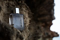 Perfume on stone. Stylish Perfume bottle on the grey stone stock photography