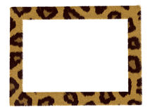 Stylish picture leopard pattern frame isolated Royalty Free Stock Images