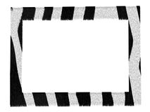 Stylish picture zebra pattern frame isolated Royalty Free Stock Photography