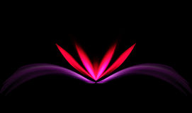 Stylish Pink and Red Lotus. Abstract or stylish pink and red lotus on black background Royalty Free Stock Photos
