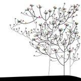 Stylish plant colorful Royalty Free Stock Images