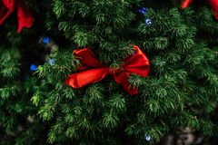 Stylish red bows on natural green christmas tree and garland lig. Hts , celebration decoration for holidays in the city Stock Photography
