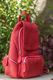Stylish red leather snkeskin python rucksack near the swimming pool. Bali island. Stylish red leather snkeskin python rucksack near the swimming pool stock photography