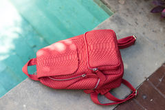 Stylish red leather snkeskin python rucksack near the swimming pool. Bali island. Stylish red leather snkeskin python rucksack near the swimming pool royalty free stock photo