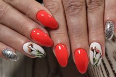 stylish red manicure Stock Photography